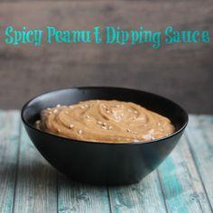 Spicy Peanut Dipping Sauce - disappointing #AllrecipesFaceless #MyAllrecipes @allrecipes