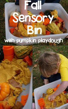 Fall sensory bin with homemade pumpkin playdough. Very interesting playdough recipe made with canned pumpkin and corn starch!