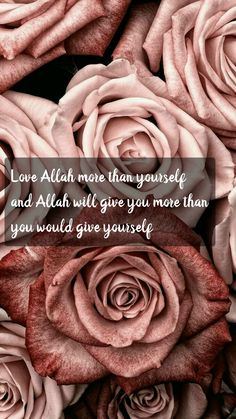 Love Allah more than yourself Islamic Qoutes, Islamic Inspirational Quotes, Muslim Quotes, Beautiful Quotes About Allah, Beautiful Islamic Quotes, Love In Islam, Allah Love, Allah Quotes, Quran Quotes