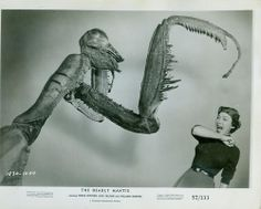 Alix Talton screams in 'The Deadly Mantis', 1957 lobby card. Sci Fi Horror, Horror Films, Fiction Movies, Science Fiction, Robot Monster, Sci Fi Films, Classic Sci Fi, Classic Monsters, Sci Fi Books