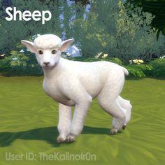 Llama, Suffolk Sheep, Sheep and Goat at Kalino image 806 670x670 Sims 4 Updates