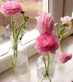 Ranunkler Peonies, Glass Vase, Rose, Flowers, Decor, Pink, Decoration, Roses, Decorating