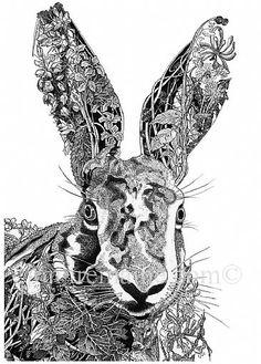 1523_running_hare_head_zoom.jpg (366×511)