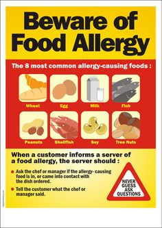 Beware of Food Allergy - Poster for Restaurant Clean Eating Shrimp, Most Common Allergies, Food Safety Tips, Amazing Chocolate Cake Recipe, Safety Posters, Foods To Avoid, Personal Hygiene, Recipe Images, Low Calorie Recipes
