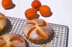 Aprikosen Törtchen oder Gutes kann so einfach sein