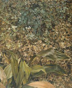 Lucian Freud, Two Plants(1977-80)