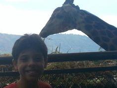 Zoo 18/01/2013