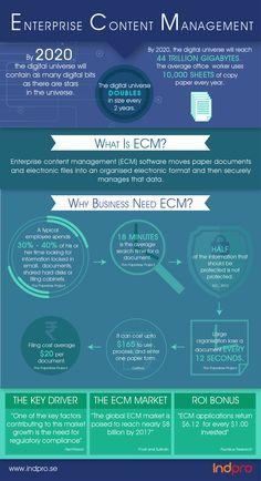 Digital Asset Management, Risk Management, Project Management, Universe Size, Enterprise Content Management, Regulatory Compliance, Team Models, Biotechnology, Software Development