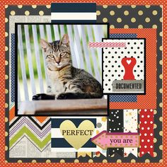 PERFECT - Diverse Simple Stories papers Cat Sketch, Simple Stories, Saving Ideas, Dog Cat, Layout, Scrapbook, Cats, Paper, Frame