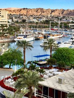 Eilat, Israel Eilat, Best Places To Travel, Places To Go, Haifa, Trotter, Beautiful Places To Visit, Palestine, Middle East, Places Ive Been