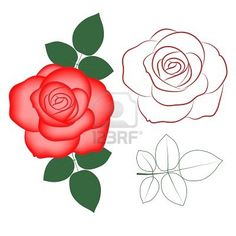 Red rose painted silhouette and in color, vector Stock Photo