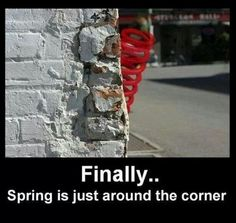 Spring weather season just around the corner // funny pictures - funny photos - funny images - funny pics - funny quotes - Bad Puns, Funny Puns, Funny Stuff, Funny Things, Random Stuff, Funny Humor, Car Humor, Funny Shit, Random Things