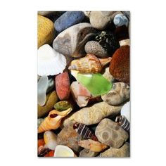 """Trademark Art """"PetoskeyStones l"""" by Michelle Calkins Photographic Print on Wrapped Canvas Size: 24"""" H x 16"""" W x 2"""" D"""