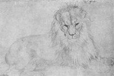 Lion - (Albrecht Durer)