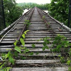 The old train bridge : Florence,AL