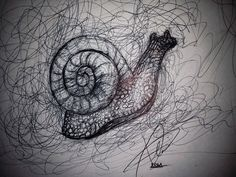 #quick sketch