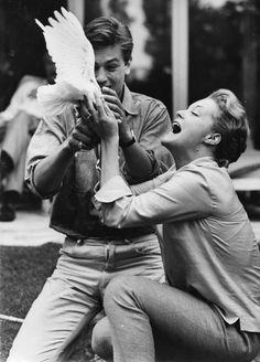 romyschneider: Romy Schneider and Alain Delon at home, 1959