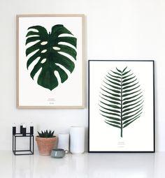 Plant prints - botanic interior, nordic design.
