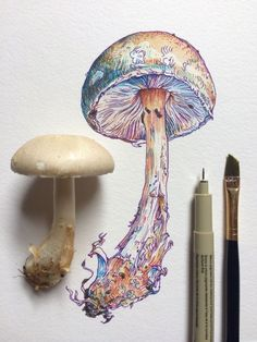 Noel Badges Pugh I love this colorful illustration! Art Inspo, Kunst Inspo, Inspiration Art, Art And Illustration, Plant Drawing, Painting & Drawing, Nature Drawing, Drawing Drawing, Illustration Botanique