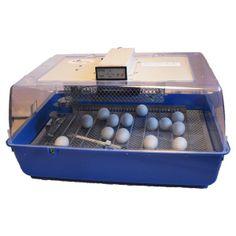 Äggkläckningsmaskin Fiem Inca 45. Äggkläckningsmaskin för 45 st. hönsägg kan du köpa till lågt pris på Lantbutiken.