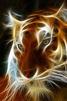Tiger Vs Wolf Wallpaper - Tiger Vs Wolf Wallpaper A high quality Animal wallpaper. Lion Wallpaper, Animal Wallpaper, Art Fractal, Fractal Images, Animals And Pets, Cute Animals, Glitter Images, Tiger Art, Tier Fotos