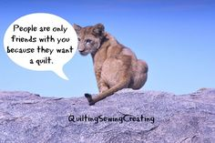 Hard Truths for Quilters from Baby Animals | Quilting Sewing Creating