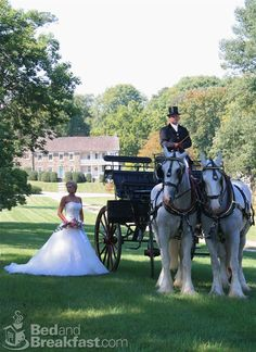 How I'd like to be a bride waiting for my Prince Charming to come riding down on his horse, jump off, and sweep me off my feet and climb into the carriage!! Perfect w/ the background also...