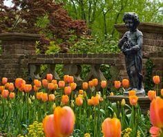 Virginia Historic Gardens