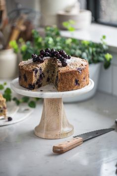Tara's Blueberry Poppy Seed Snacking Cake - Cook Republic