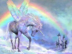 .2017/07/10 Rainbow Pegasus