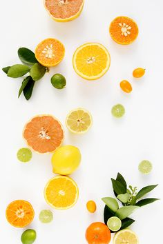 Citrus Stock Photography by Shay Cochrane for the SC Stockshop.  Styled stock photography for creative businesses. Join the mailing list and get free styled stock images to your inbox every month: http://shaycochrane.com/sc-insider/