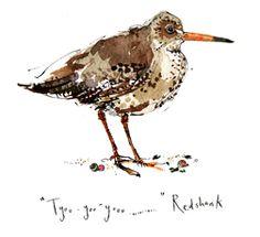 Lovely bird illustration by Madeleine Floyd