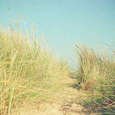 Path to Paradise - Landscape photography, nature, sand dunes, beach photography, beach decor, bathroom art, sky blue, grass green, sand