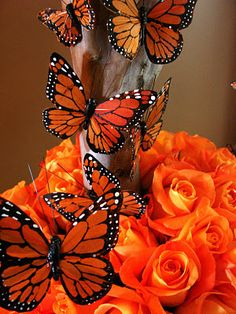 Monarch Butterflies mixed with orange roses by Mandy Majerik