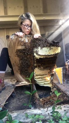 "ERIKA THOMPSON | BEEKEEPER on Instagram: ""Bees had been living in this backyard shed for at least two years. The landlord wanted to call an exterminator, but the family who lived…"" Creature Feature, Bee Happy, Bee Keeping, Being A Landlord, Erika, Bees, At Least, Insects, Backyard"