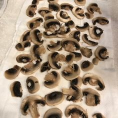If you're a mushroom lover, this post is for you! You will learn step by step how to freeze mushrooms so you have them all year long. Can You Freeze Mushrooms, Freezing Mushrooms, Freezer Recipes, Freezer Meals, Cooking Recipes, Canned Food Storage, Food Hacks, Stuffed Mushrooms, Oven
