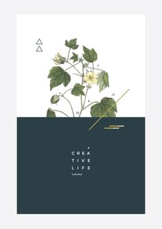 41 new ideas nature design graphic illustration poster Freelance Graphic Design, Graphic Design Posters, Graphic Design Typography, Graphic Design Illustration, Graphic Design Inspiration, Modern Graphic Design, Floral Posters, Simple Poster Design, Flower Graphic Design