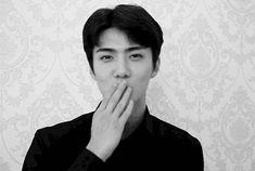 Handsome Men In Suits, Sehun Cute, Exo Fan, Cute Gif, Wattpad, Chanyeol, My Idol, Kpop, Celebrities