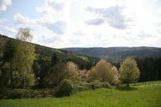 De prachtige #natuur van #Odenwald is perfect voor lange #wandelingen en #fietstochten. Wandel langs de #Katzenbuckel, de inactieve #vulkaan, of door #Margaretenschlucht, een prachtige #kloof in het #natuurpark. #reizen #travel #travelbird #Duitsland #landschap