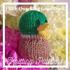 FREE Quackingly Quick Duck Knitting Pattern This little knitted duck is quick and easy. Made with oddments of green, brown, yellow and white double knitting yarn. single pointed needles were used. It is about tall when. Unicorn Knitting Pattern, Baby Knitting Patterns, Knitting Yarn, Free Knitting, Charity Knitting, Mittens Pattern, Knitting Charts, Crochet Patterns For Beginners, Knitting For Beginners
