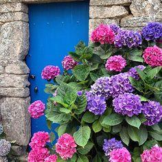 #iledegroix #destinationbretagne #ile_de_groix #jaimelabretagne…