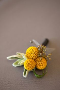 Billy-Ball-Boutonniere. these are my favorite flowers