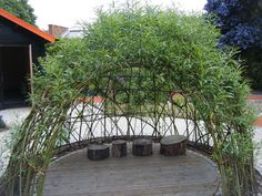 living willow season is approaching. here is a dome we made at Capel Manor Gardens, Enfield Preschool Garden, Sensory Garden, Natural Play Spaces, Natural Structures, Garden Nursery, Outdoor Classroom, Outdoor Playground, Outdoor Learning, Garden Projects
