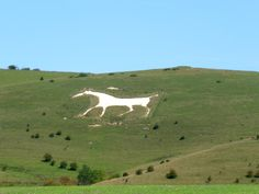 Seen the white chalk horses in England