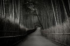 outtakes 2012 #1 (near Tenryuu-ji temple, Kyoto) | by Marser