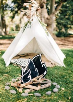 Max's Teepee Party | CatchMyParty.com