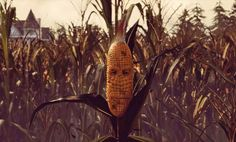 'Maize' mates first-person puzzle gaming with sentient corn - http://www.sogotechnews.com/2016/05/18/maize-mates-first-person-puzzle-gaming-with-sentient-corn/?utm_source=Pinterest&utm_medium=autoshare&utm_campaign=SOGO+Tech+News
