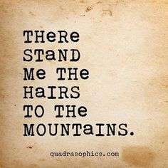 hairs to the mountains hairs to the mountains - Beliebt Haar Malen True Quotes, Best Quotes, Funny Quotes, Mountain Quotes, German Words, Seriously Funny, Have A Laugh, Funny Facts, Letter Board