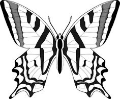 La Chachipedia: Mariposas para colorear, para imprimir y gifs animados