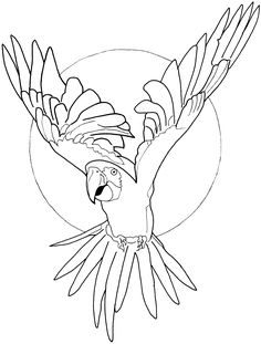 Parrot Line Drawing #2